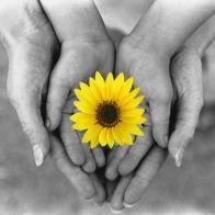 healing-hands4
