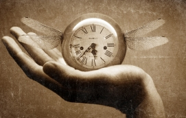 time_flies_by_janussyndicate